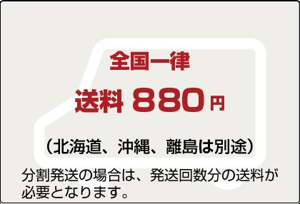 全国一律 送料800円